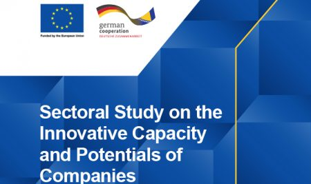 The sector study on innovative capacities and potentials of companies